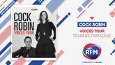 RFM partenaire de la tournée française 2021 de Cock Robin !